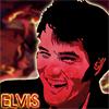 _Elvis77_